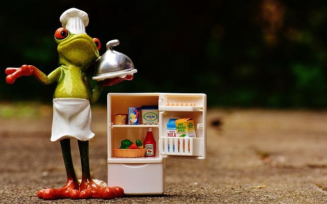 žába kuchařka
